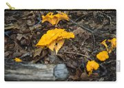 Smooth Chanterelle Carry-all Pouch