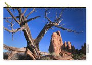Snag At  Fiery Furnace Labyrinth Arches Carry-all Pouch