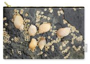 Snail Family Vacation Carry-all Pouch