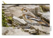 Snow Bunting Pictures 43 Carry-all Pouch