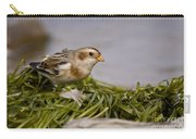 Snow Bunting Pictures 87 Carry-all Pouch