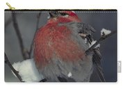 Snow Covered Pine Grosbeak Carry-all Pouch
