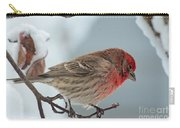 Snow Day Housefinch  Carry-all Pouch