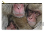 Snow Monkey And Young Carry-all Pouch