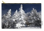 Snow Spruce Sunshine Carry-all Pouch