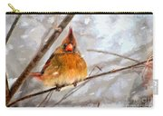 Snow Surprise - Painterly Carry-all Pouch