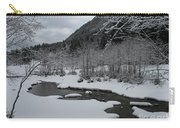 Snowed Under Valley Carry-all Pouch