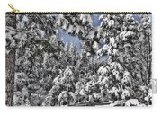 Snowy Dreams  Carry-all Pouch