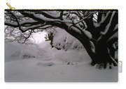 Snowy Path Carry-all Pouch by Amanda Moore