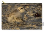 Snowy Plover Transformation Into A Spiderbird 1 Carry-all Pouch