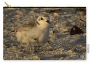 Snowy Plover Transforms Into A Spiderbird 2 Carry-all Pouch