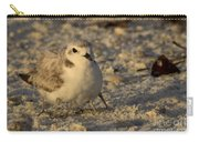 Snowy Plover Transforms Into A Spiderbird 3 Carry-all Pouch