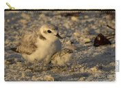 Snowy Plover Transforms Into A Spiderbird 4 Carry-all Pouch