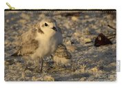 Snowy Plover Transforms Into A Spiderbird 5 Carry-all Pouch