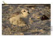 Snowy Plover Transforms Into A Spiderbird 6 Carry-all Pouch