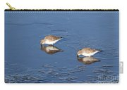 Snowy Plovers Carry-all Pouch