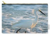 Snowy Siesta Key Sunset Carry-all Pouch