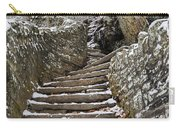 Snowy Steps Carry-all Pouch