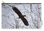 Soaring Above Carry-all Pouch