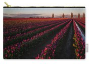 Soaring Spring Colors In Skagit Carry-all Pouch