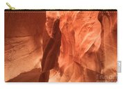 Soft Sculpted Sandstone Walls Carry-all Pouch by Adam Jewell
