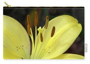 Softly Golden Carry-all Pouch