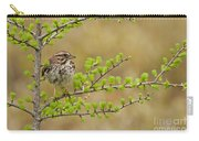 Song Sparrow Pictures 111 Carry-all Pouch