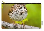 Song Sparrow Pictures 132 Carry-all Pouch