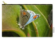 Sonoran Blue Carry-all Pouch