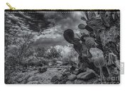 Sonoran Desert 15 Carry-all Pouch