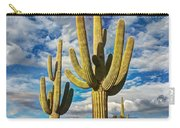 Sonoran Desert Beauty Carry-all Pouch