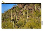 Sonoran Desert West Saguaro National Park Carry-all Pouch