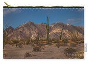 Sonoran  Carry-all Pouch