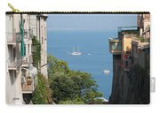 Sorrento Views Carry-all Pouch