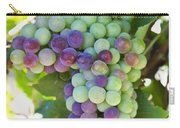 South Africa, Scenes At Constantia Carry-all Pouch