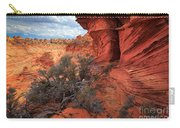 South Coyote Buttes Grand View Carry-all Pouch by Inge Johnsson