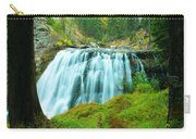 South Fork Falls  Carry-all Pouch