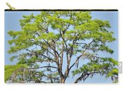 Southern Cypress Carry-all Pouch