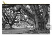 Southern Dreamer Bw Carry-all Pouch