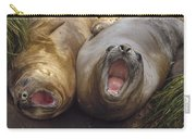 Southern Elephant Seal Pair Calling Carry-all Pouch by Konrad Wothe