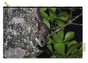 Southern Flying Squirrel Carry-all Pouch