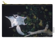Southern Flying Squirrel Carry-all Pouch by Nick Bergkessel Jr