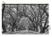 Southern Journey Bw Carry-all Pouch
