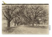 Southern Journey Sepia Carry-all Pouch