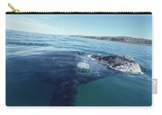 Southern Right Whale At Surface Carry-all Pouch