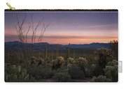 Southwest Serenity  Carry-all Pouch