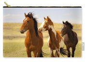 Southwest Wild Horses On Navajo Indian Reservation Carry-all Pouch
