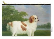 Spaniel In A Landscape Carry-all Pouch