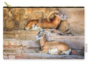 Spanish Ibex Carry-all Pouch