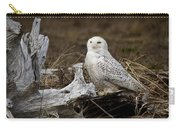 Spectacular Owl Carry-all Pouch